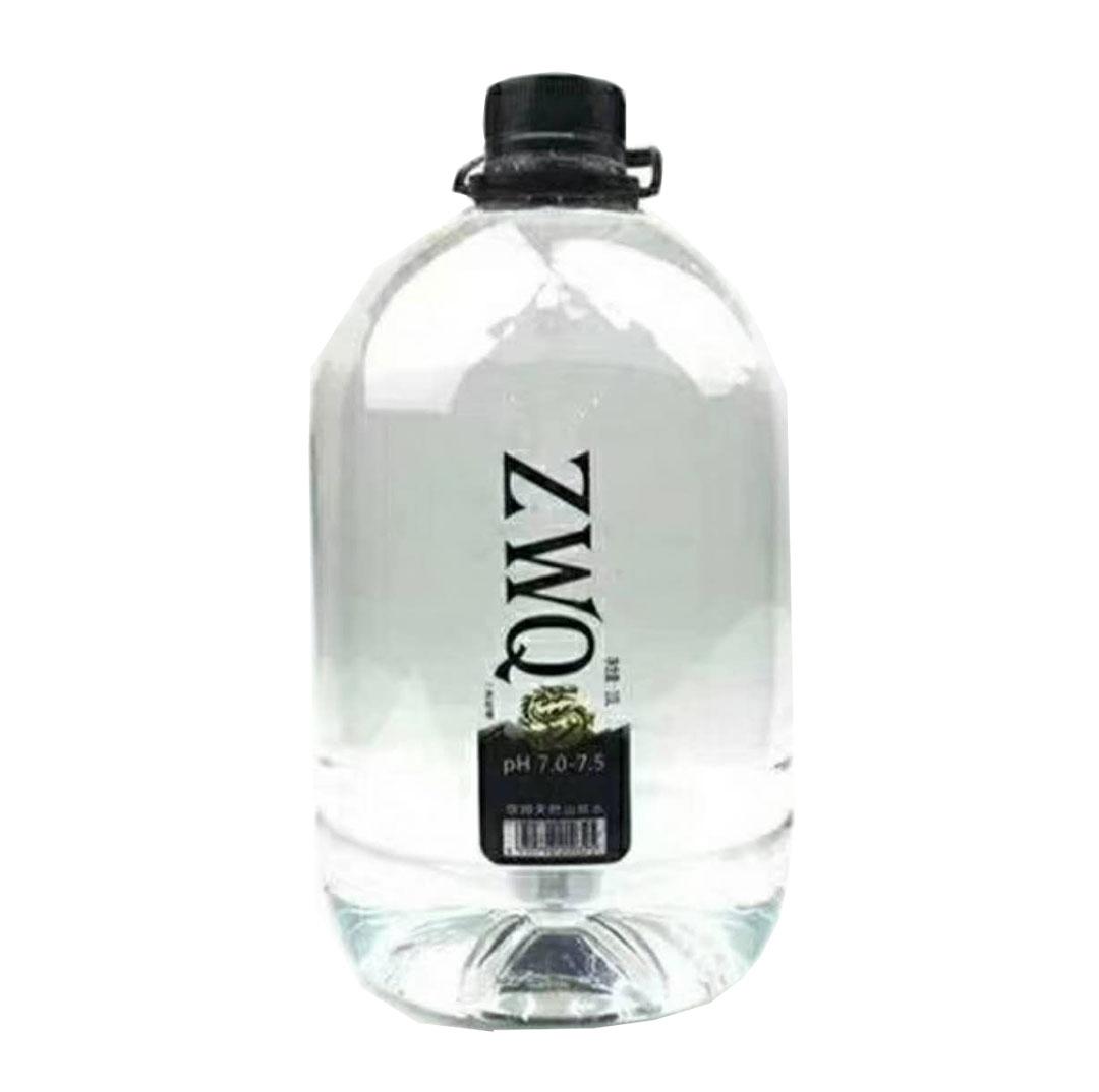 真午泉ZWQ一次性包装饮用水10L